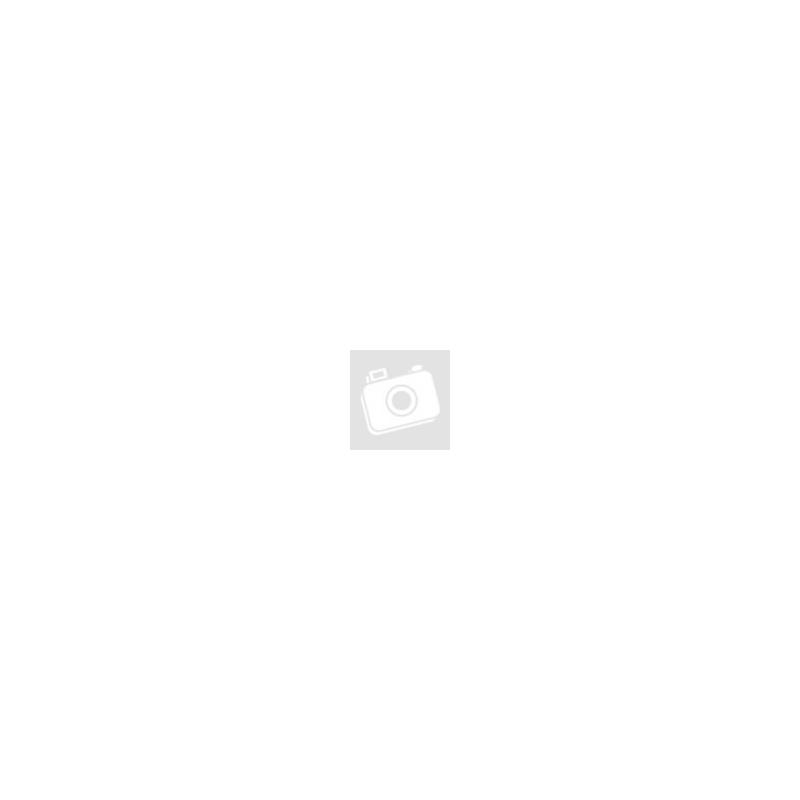 Indiánok sátorral